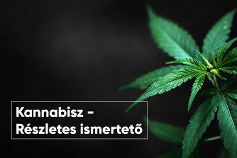 Kannabisz - részletes információk a kenderről